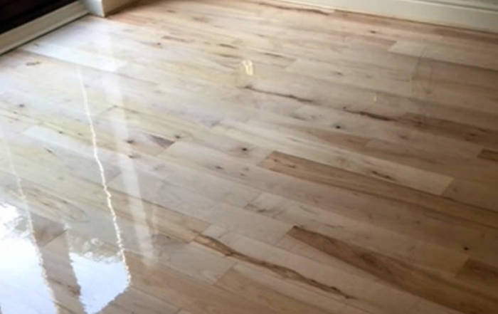 Maple floor sanded and sealed