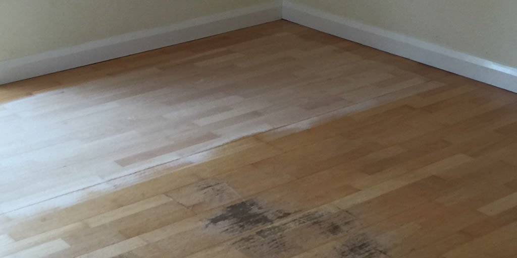 Floor sanding and sealing - Radley